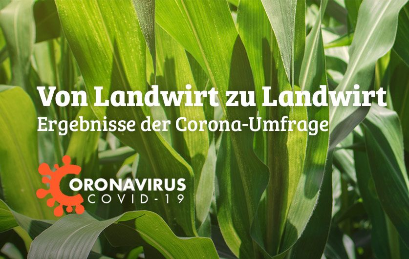 Marketing Deutschland hat Kunden gebeten, ein paar Fragen zum Umgang mit Corona zu beantworten. Die Ergebnisse wurden in einem kurzen Bericht zusammengefasst.