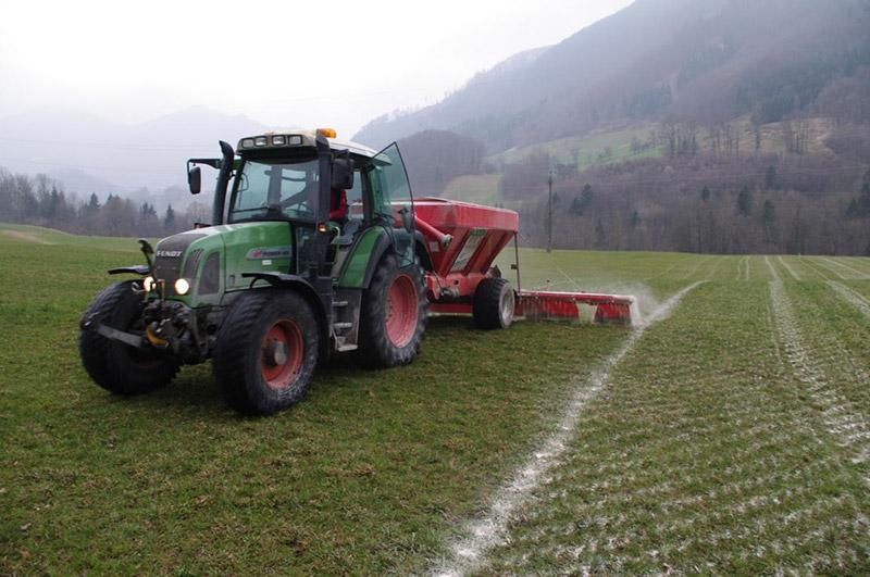 Günlandkalkung sichert den Erhalt hochwertiger Gräser wie Wiesenschwingel, Timothe, Wiesenrispe, Englisches Raygras etc. sowie Leguminosen.